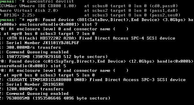 BUG: Passthrough HBA Controller with VMWare 7.0